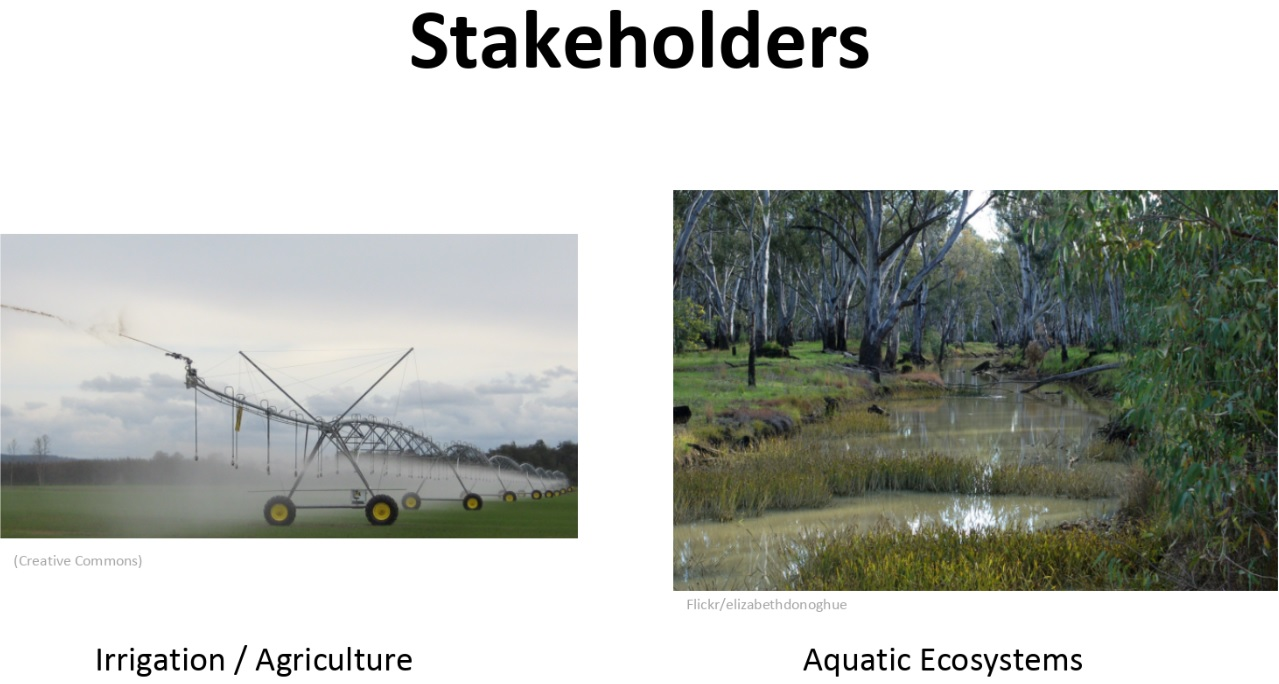 Irrigation vs Aquatic ecosystems stakeholders